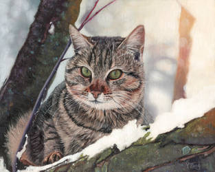 Oil painting-Cat in the tree by PeachtreeDandan