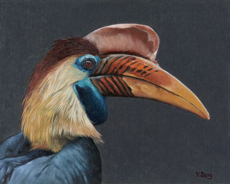 Oil Painting - Hornbill profile by PeachtreeDandan