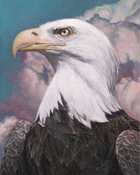 Oil Painting - Bald eagle