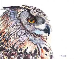 Gouache painting - Great Horned Owl portrait