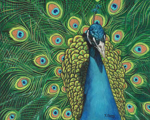 Oil Painting-Peacock
