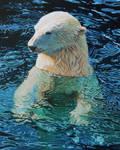 Oil Painting-Floating Polar bear