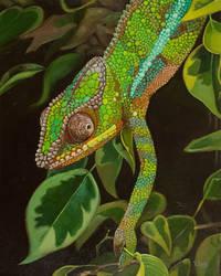 Oil painting - Chameleon portrait