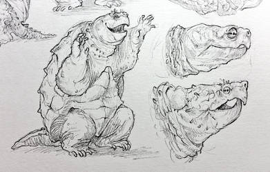 Snapping Turtle Studies