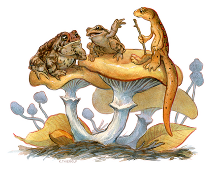 Newt Moot 5: Frog and Toad
