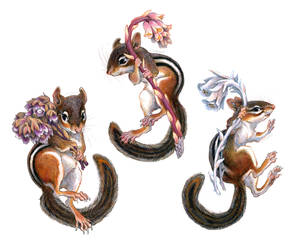 Chipmunks with Mycotrophs