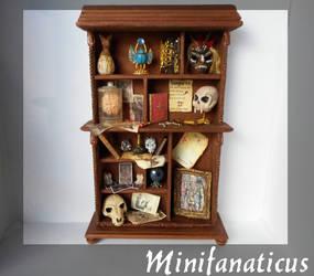 The Dreadful Curio : Penny Dreadful Cabinet by Minifanaticus