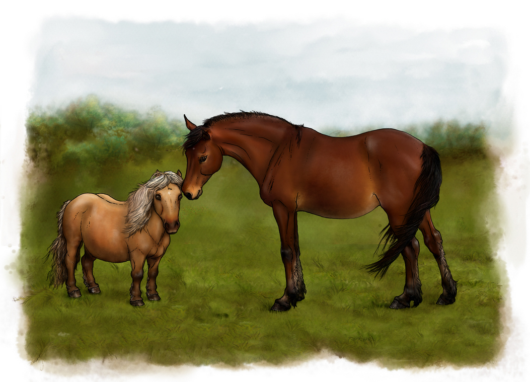 Bonnie and The Foal by oingy-boingy