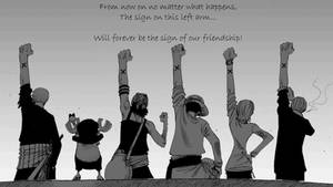 One Piece - Friendship Desktop by McCurleyFries