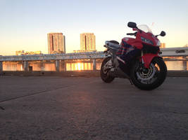 Honda CBR600 by McCurleyFries