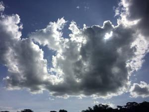 Elephant Clouds