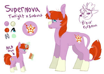 Dorkverse Supernova Bio by ReneeTheEchidnaFox14