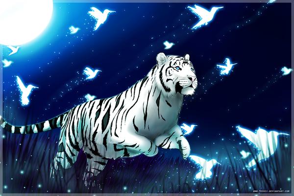 Colibri sky by Yechii