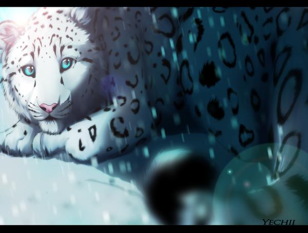 Snow by Yechii