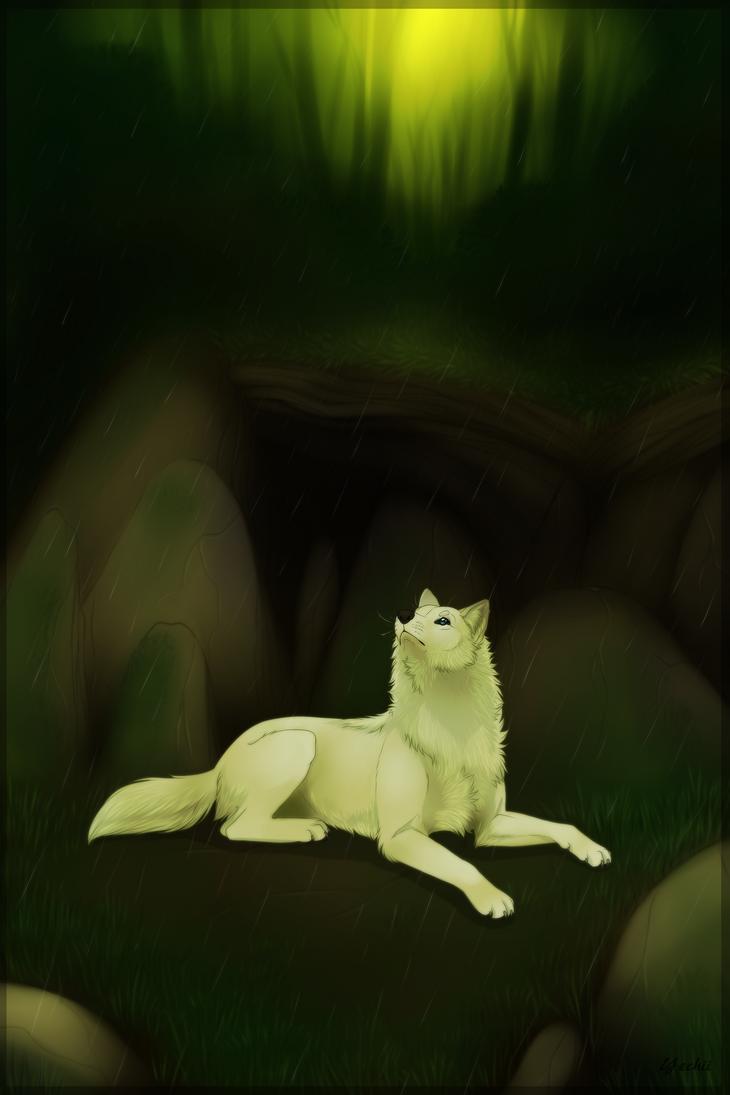 Wolf in the rain+Speedpaint by Yechii
