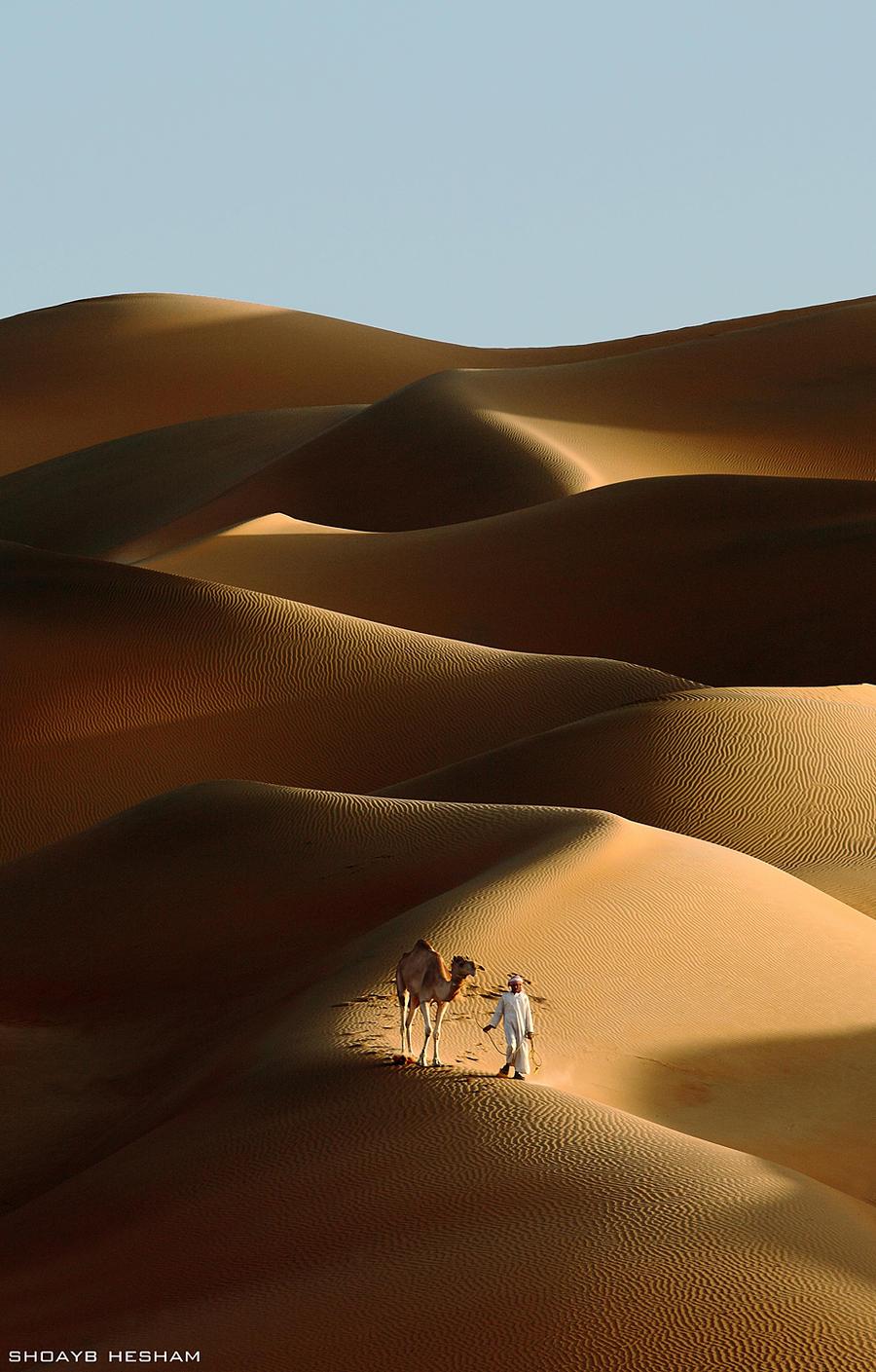 Desert Walk by Shoayb