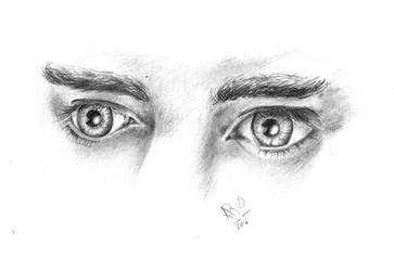 .:The Elven King's Eyes:. by NerwenNenharma