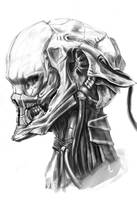 skull_02 by kometani