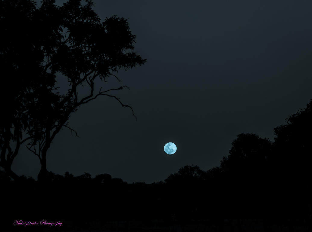 Blue Moon July 31st 2015 by midnightrider79