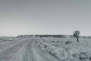 Lonely Road by midnightrider79