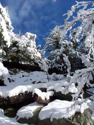 Snow IV by Faith0Bound0Heart