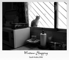 Window Shopping by alaaelfadel