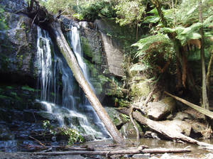 Waterfall, Tasmania, 2006