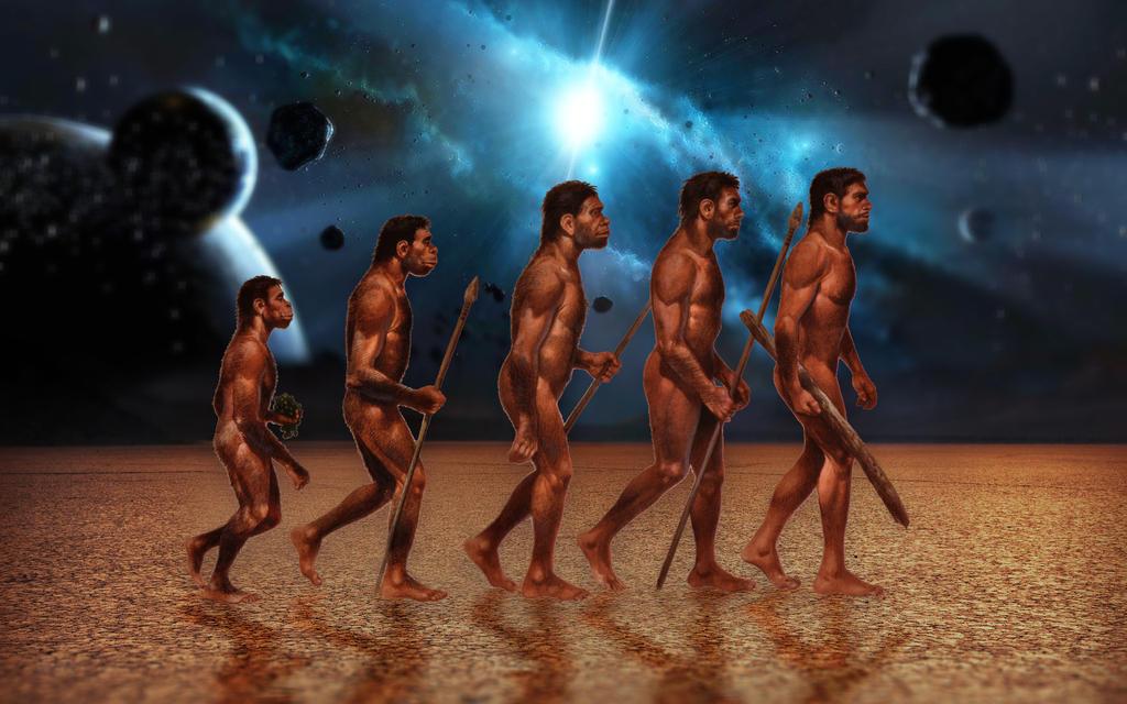 Evolution by ZloyKritik