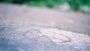 Peace: Etched In Stone