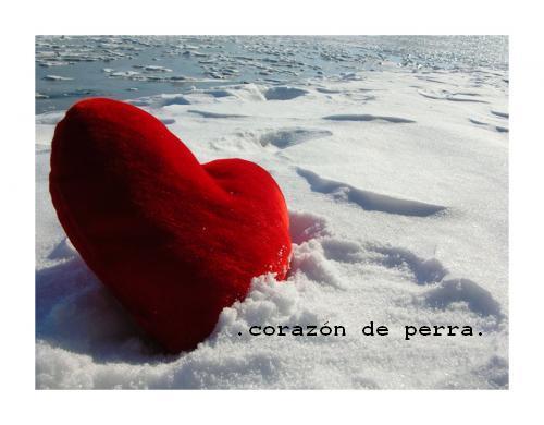 mon coeur by corazondeperra