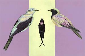 Three Birds by iamthetv