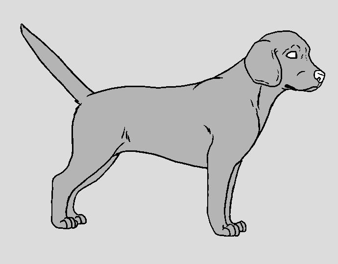 Dog Template - Beagle by NaruFreak123-Bases on DeviantArt