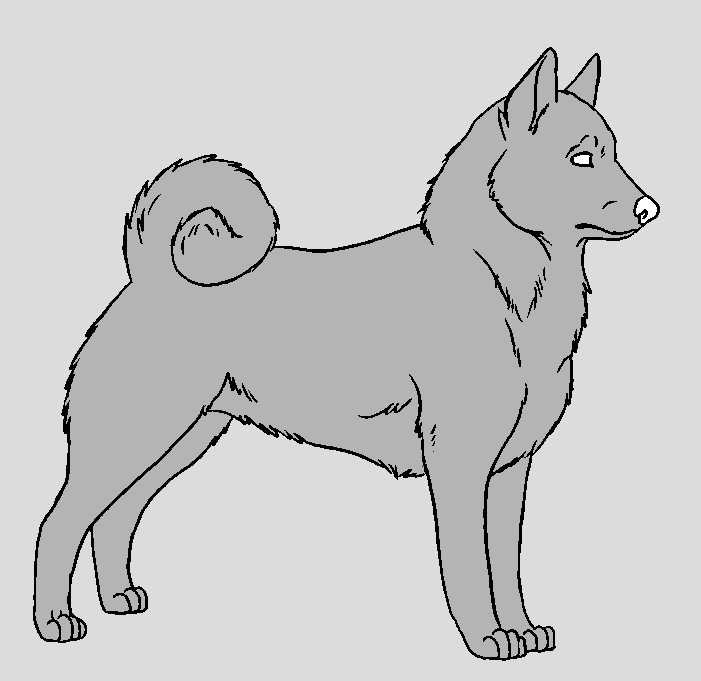 dog template norwegian elkhound by narufreak123 bases on deviantart