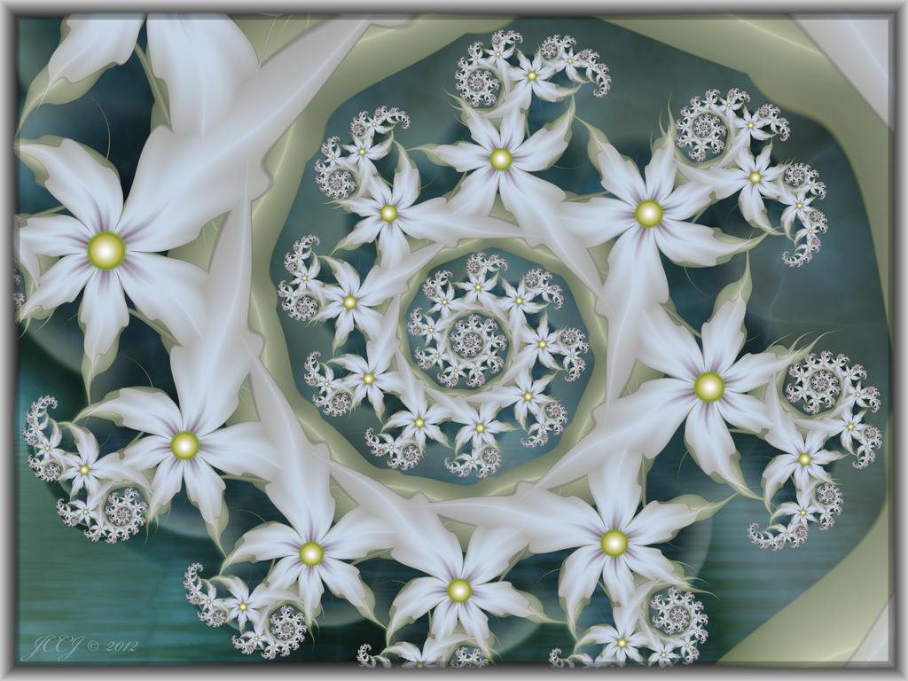 White Blooms by JCCJ756