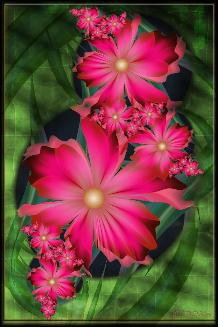 A Little Pink by JCCJ756