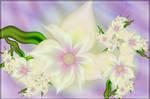 Spring Blooms 5