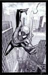 Spiderman Pre-show