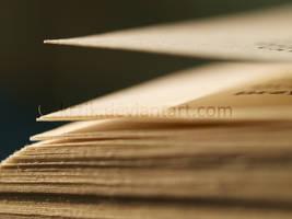 Book by Krzik