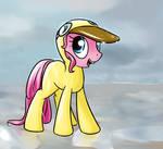 Pinkie's Raingear