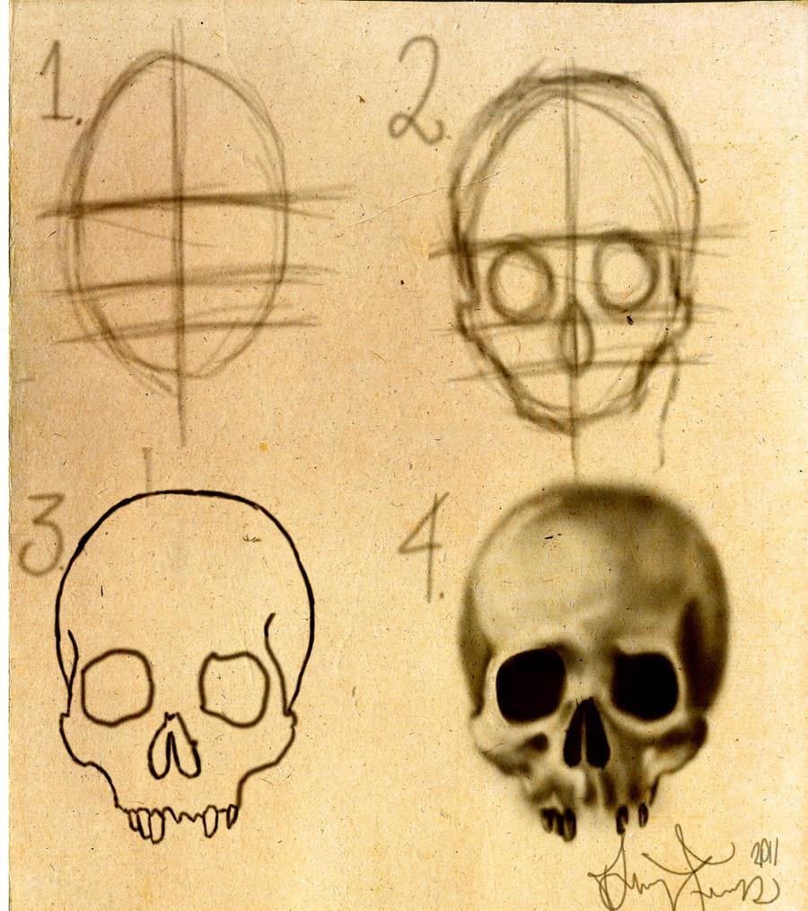 how to draw a skull stepbystep by dforssten on deviantart