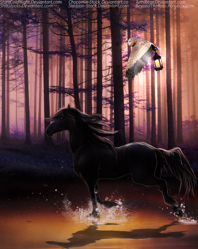 The Horse and the Owl