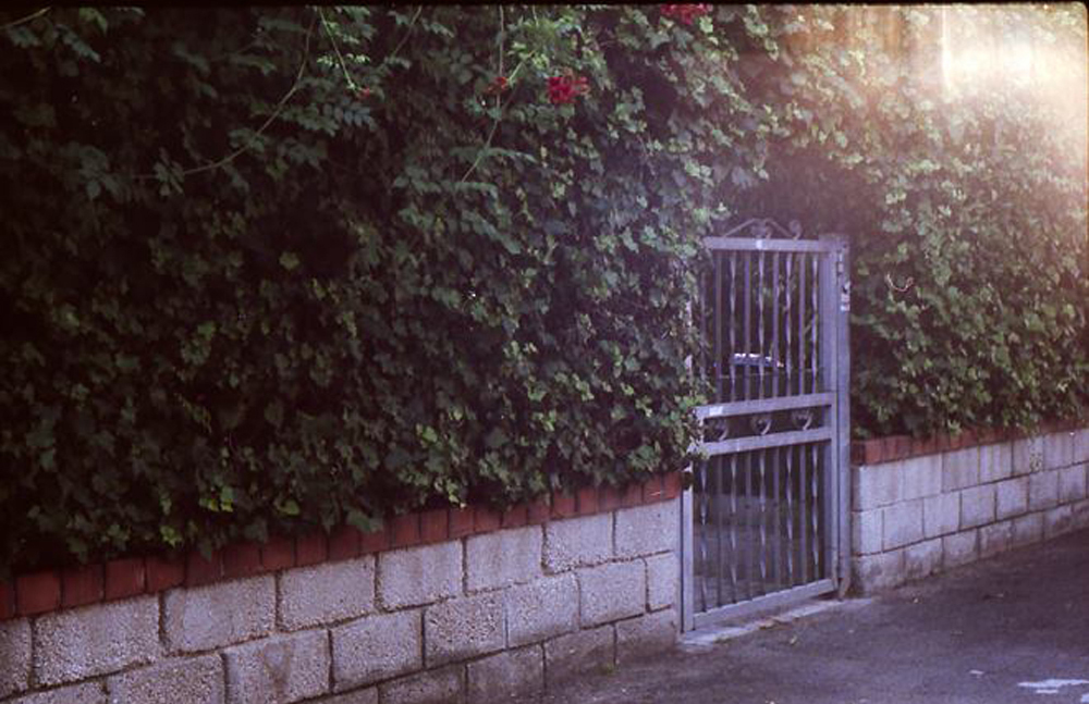 secret garden by agnieszkakryspin