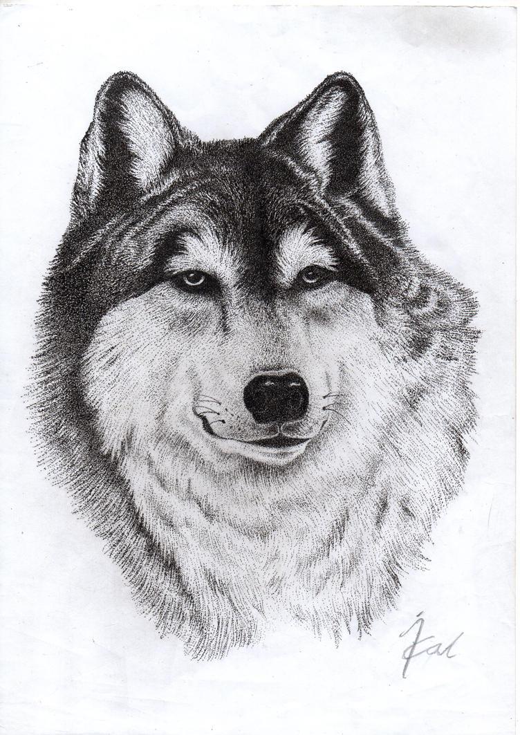 Snow wolf Pointilism / Stippling by Natrizald