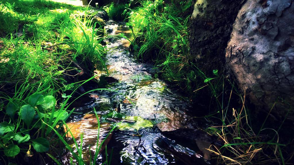 Rill water stream by asp1xl