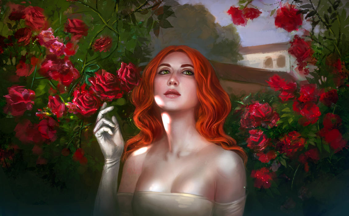 Rose by anndr