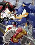 Sonic Versus Shadow, ver. 2007