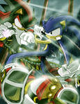 Sonic Versus Shadow