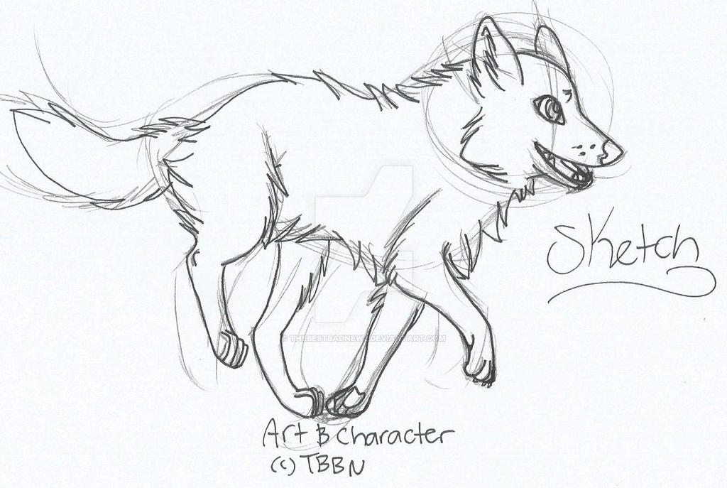 Wolf Sketch by TheBestBadNewz