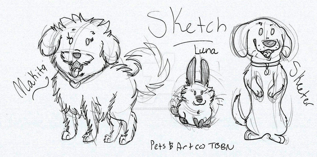 My Pets Sketch by TheBestBadNewz