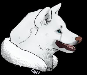 DenimBirdie's Profile Picture